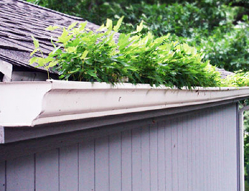 5 Gutter Cleaning Myths